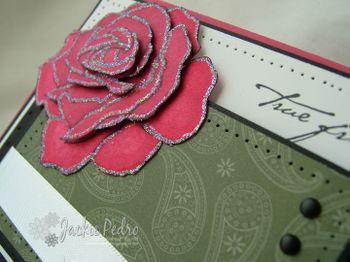 CC209-Rose-Close-Up_JP
