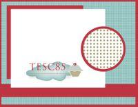 TESC85