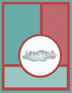 TESC91